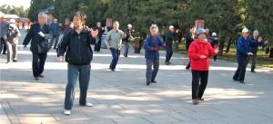 Tajij Dao | Chinese krijgskunsten | Taiji Quan | Wu Shu | krijgskunsten | Qi levensenergie| Oldenzaal | Paul Grefte | San Qi Dao